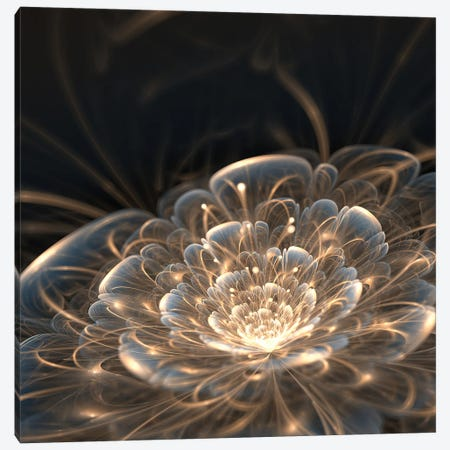 Dark Blue Fractal Flower With Golden Rays Canvas Print #DPT7} by anikakodydkova Canvas Wall Art
