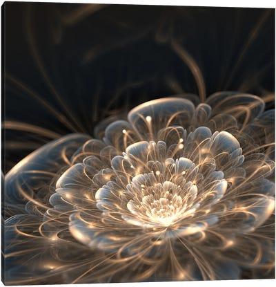 Dark Blue Fractal Flower With Golden Rays Canvas Art Print
