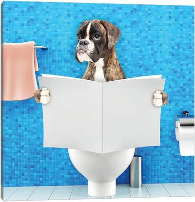 Boxer Sitting On A Toilet Seat Reading Canvas Art Print