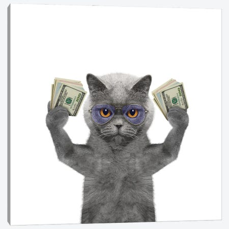Cat In Glasses Holds In Its Paws A Lot Of Money Canvas Print #DPT86} by helga1981 Art Print