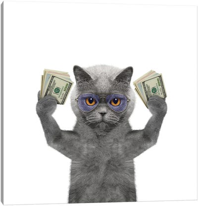 Cat In Glasses Holds In Its Paws A Lot Of Money Canvas Art Print