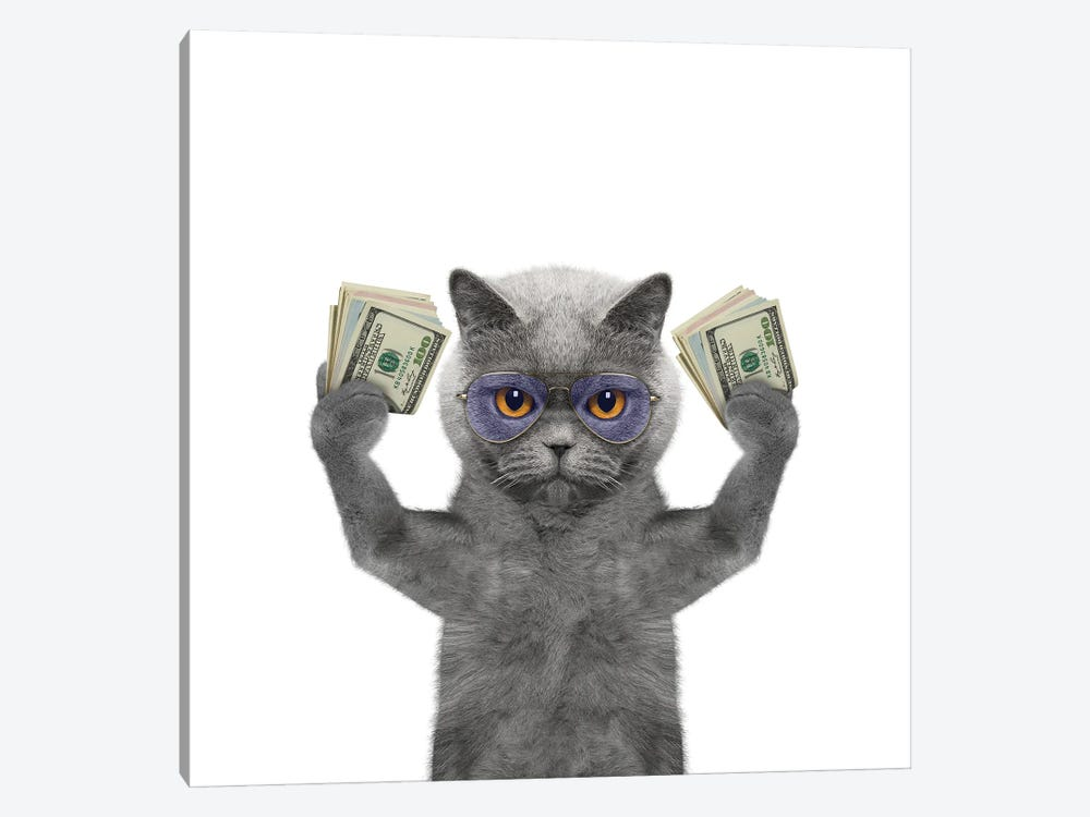 Cat In Glasses Holds In Its Paws A Lot Of Money by helga1981 1-piece Canvas Art Print