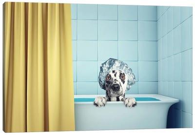 Cute Wet Dog In The Bath Canvas Art Print