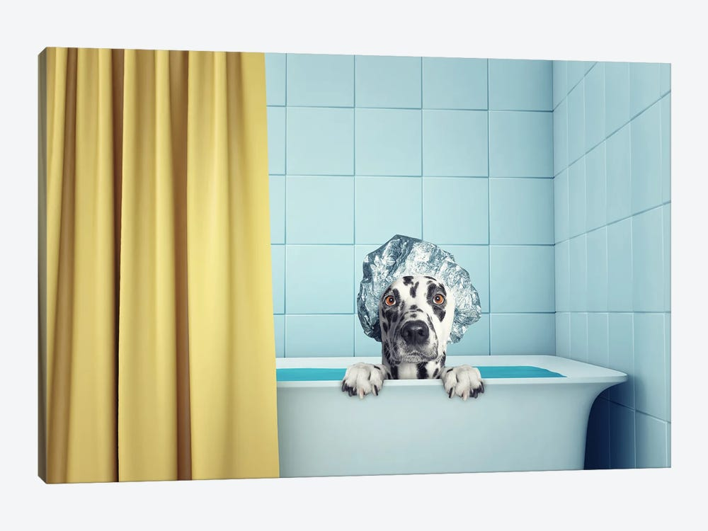 Cute Wet Dog In The Bath by helga1981 1-piece Canvas Art