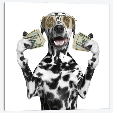 Dog In Glasses Holds In Its Paws A Lot Of Money Canvas Print #DPT88} by helga1981 Canvas Wall Art