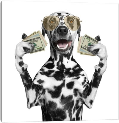 Dog In Glasses Holds In Its Paws A Lot Of Money Canvas Art Print