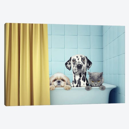 Two Dogs And Cat In The Bath Canvas Print #DPT90} by helga1981 Art Print
