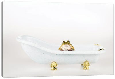 Cute Green Frog In Small Luxury Bathtub Isolated On White Canvas Art Print