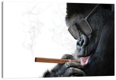Gorilla With Cool Sunglasses Smoking A Cigar Canvas Art Print
