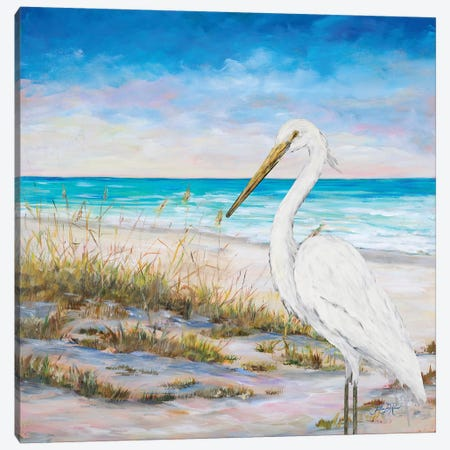 Egret On The Beach Canvas Print #DRC102} by Julie Derice Canvas Artwork