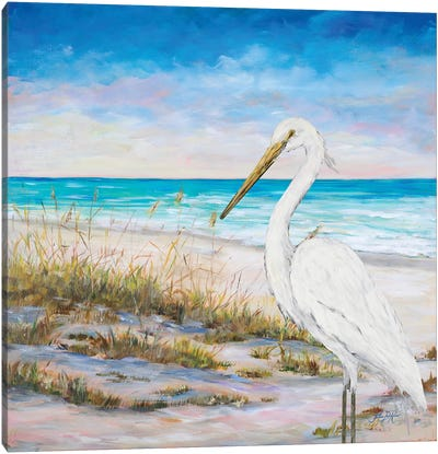 Egret On The Beach Canvas Art Print