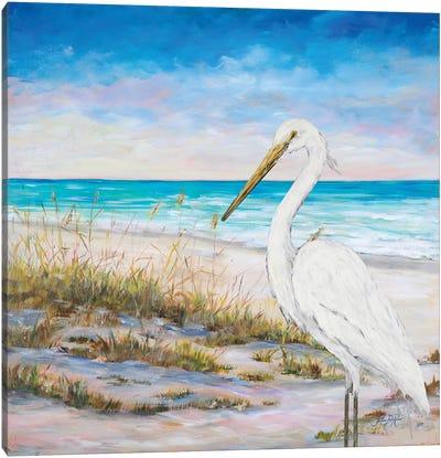 Egret On The Beach Canvas Art Print