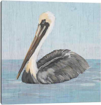 Pelican Wash I Canvas Art Print
