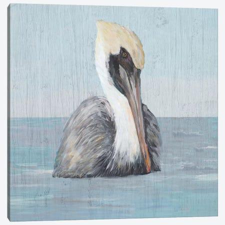 Pelican Wash II Canvas Print #DRC146} by Julie Derice Art Print