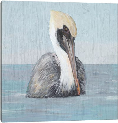 Pelican Wash II Canvas Art Print