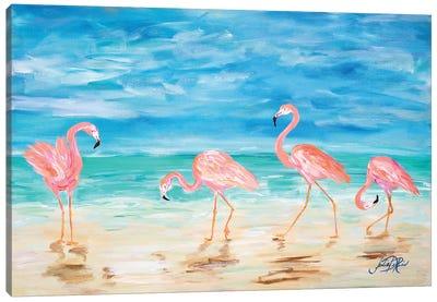 Flamingo Beach Canvas Art Print
