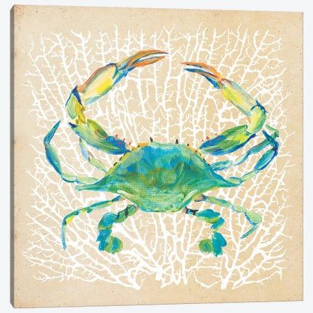 Sealife Crab Canvas Print #DRC154} by Julie Derice Canvas Art