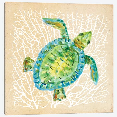 Sealife Turtle Canvas Print #DRC155} by Julie Derice Canvas Wall Art