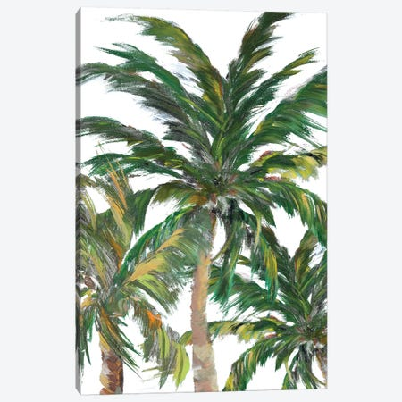 Tropical Trees On White III Canvas Print #DRC178} by Julie Derice Canvas Art Print