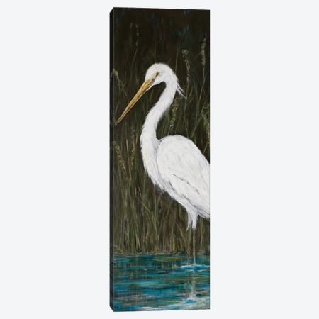 White Egret Canvas Print #DRC190} by Julie Derice Canvas Art Print