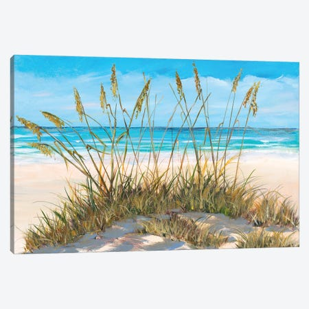 Beach Grass Canvas Print #DRC195} by Julie Derice Canvas Art