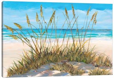 Beach Grass Canvas Art Print