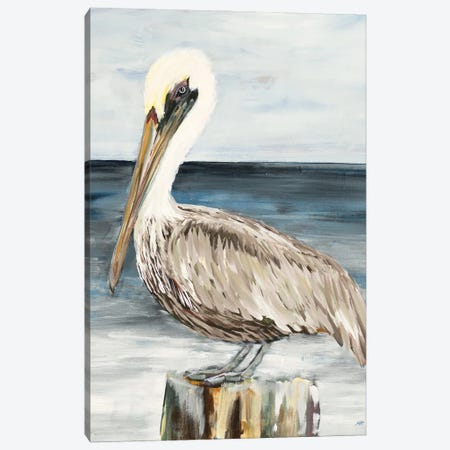 Muted Perched Pelican Canvas Print #DRC209} by Julie Derice Art Print