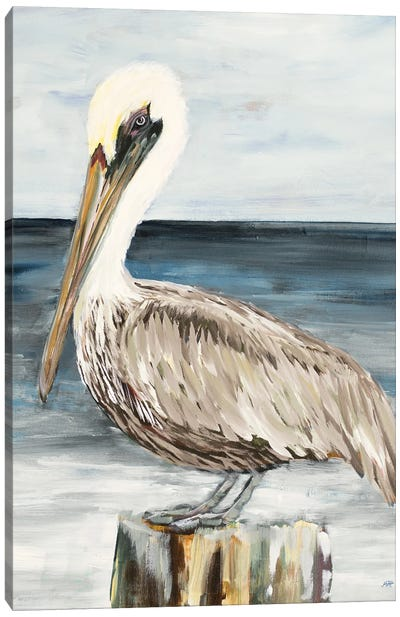 Muted Perched Pelican Canvas Art Print