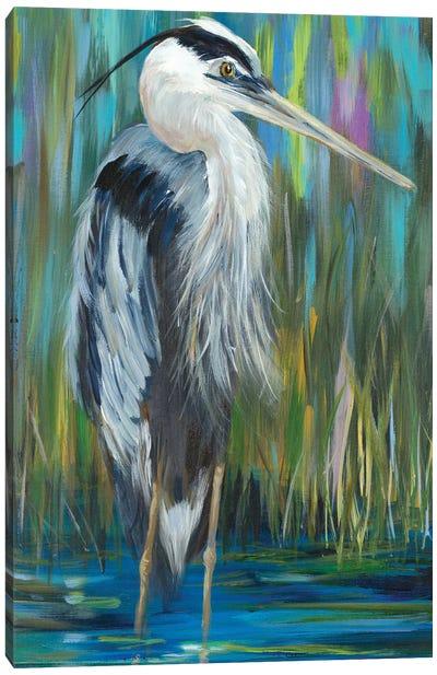 Standing Still Heron I Canvas Art Print