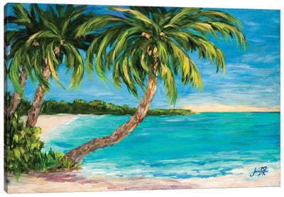 Palm Cove Canvas Art Print