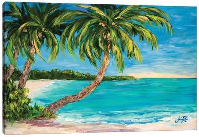 Palm Cove Canvas Art Print