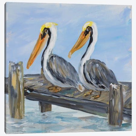 Pelicans on Deck Canvas Print #DRC44} by Julie Derice Art Print