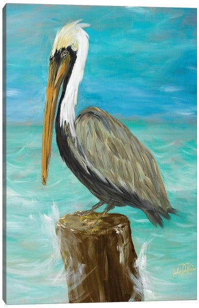 Single Pelican on Post Canvas Art Print