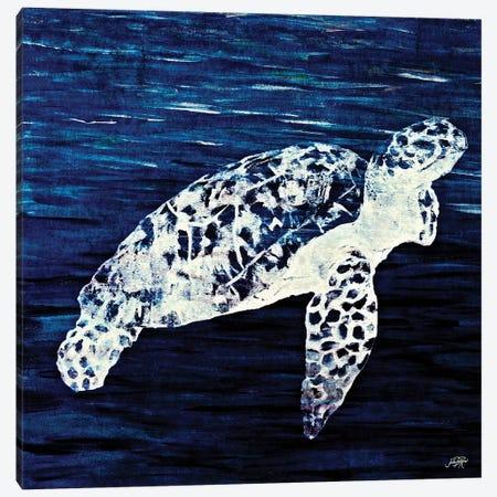 Swim Along II Canvas Print #DRC57} by Julie Derice Canvas Wall Art