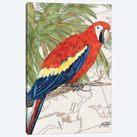 Another Bird in Paradise I Canvas Print #DRC6} by Julie Derice Canvas Artwork