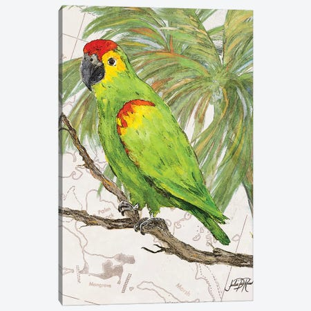 Another Bird in Paradise II Canvas Print #DRC7} by Julie Derice Canvas Art