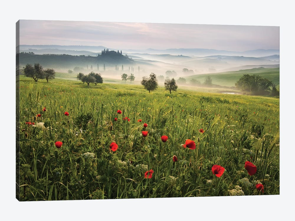 Tuscan Spring 1-piece Canvas Print
