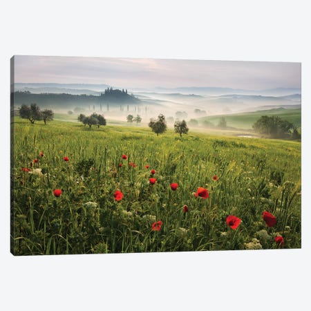 Tuscan Spring Canvas Print #DRE1} by Daniel Řeřicha Art Print