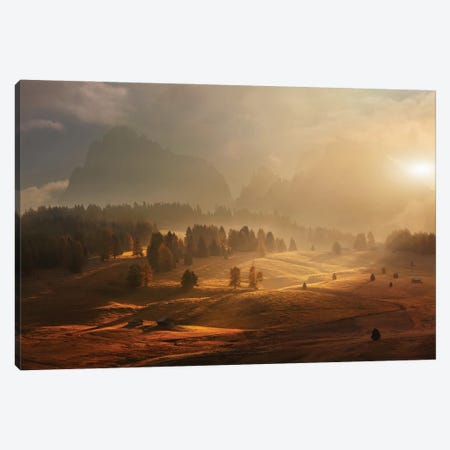 Morning On Alpine Meadow Canvas Print #DRE5} by Daniel Řeřicha Canvas Artwork