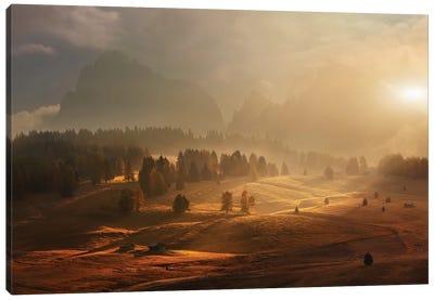 Morning On Alpine Meadow Canvas Art Print