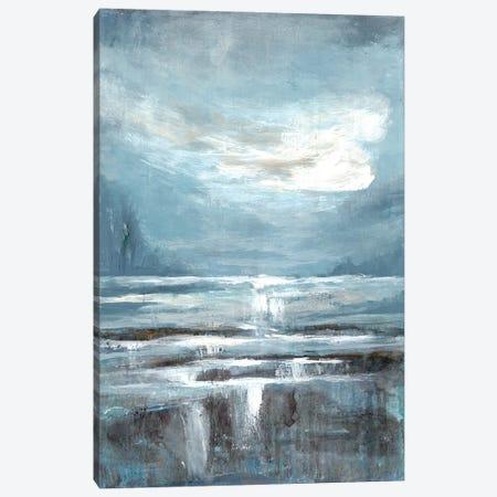 Cavernous Wonder II Canvas Print #DRI10} by Doris Charest Canvas Print