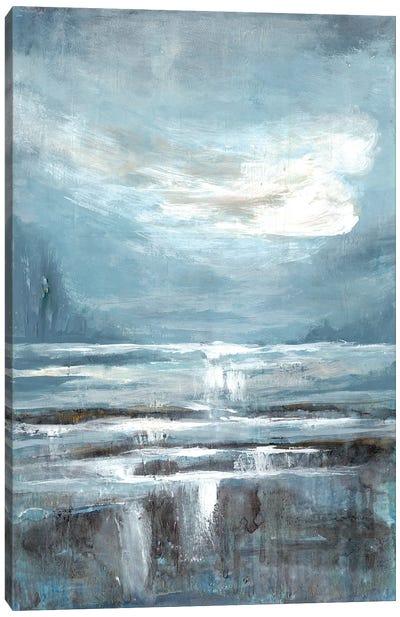 Cavernous Wonder II Canvas Art Print