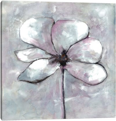 Cherished Bloom I Canvas Art Print