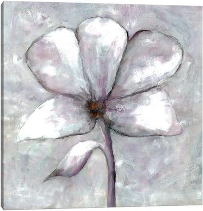 Cherished Bloom III Canvas Art Print