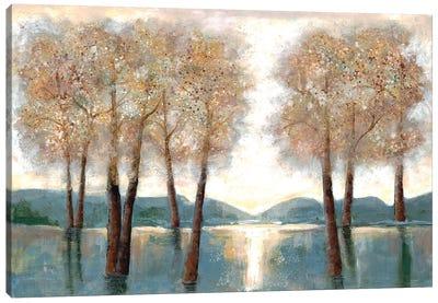 Approaching Autumn I Canvas Art Print