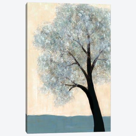 Dawning Tree I Canvas Print #DRI22} by Doris Charest Canvas Wall Art