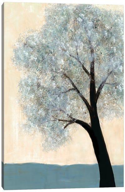 Dawning Tree I Canvas Art Print