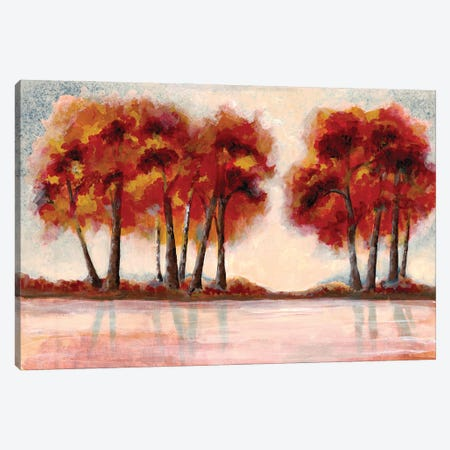 Fall Foliage II Canvas Print #DRI24} by Doris Charest Art Print