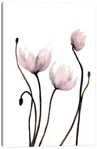 Fresh Growth II Canvas Art Print