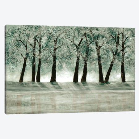 Green Forest I Canvas Print #DRI29} by Doris Charest Canvas Wall Art